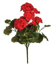 "18"" 9 Head Geranium Bush"