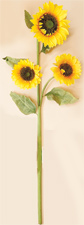 "54"" Sunflower Spray X 3"