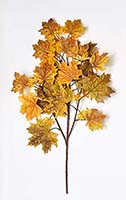 "30"" FALL CANADIAN MAPLE SPRAY W/ 38 LEAVES"