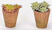 "3.5"" POTTED FAUX SUCCULENTS"