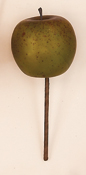 "6"" Weatherproof  Apple Pick"
