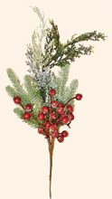 "24"" Mixed Snowy Pine Spray with Berries"