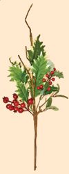 "19"" WP Red Berry & Holly Leaf Spray"