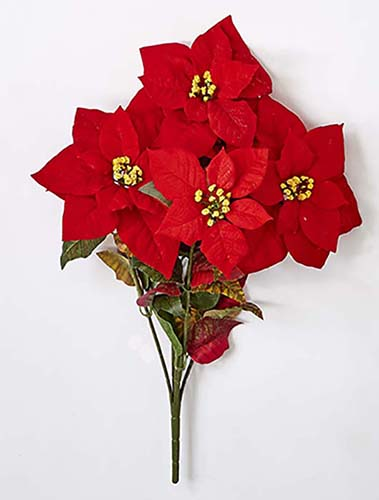 "19"" POINSETTIA BUSH W/ 5 FLOWERS"
