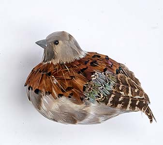 "5"" FEATHERED PARTRIDGE"