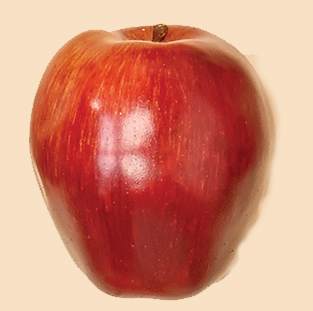 """3.5"""" Weighted Red Delicious Apple"""