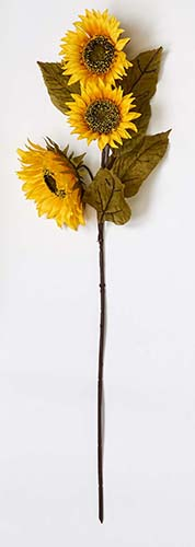 "33"" SUNFLOWER W/ 4 FLOWERS"