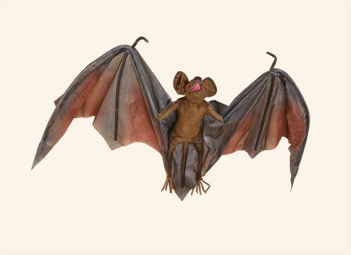 "46"" Vampire Bat"