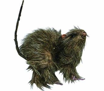 "5"" SMALL FURRY RAT"
