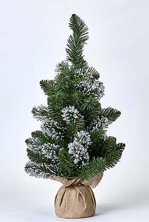 """24"""" WHITE TIP PINE TREE IN BURLAP SACK"""