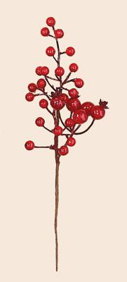 "10"" Weatherproof Berry Pick, red"