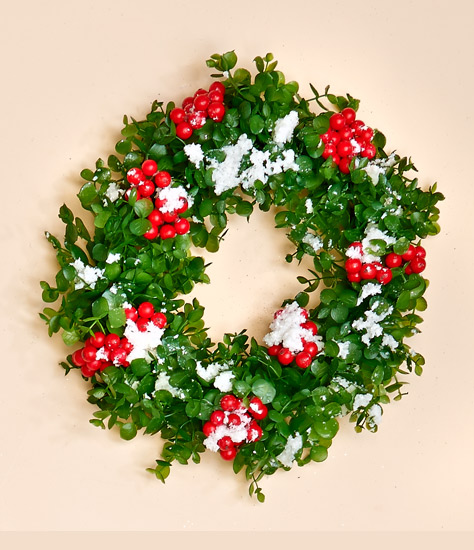 "11"" Snowy Plastic Eucalyptus Wreath w/ Berries & Snow - CLOSE OUT"
