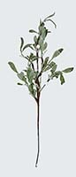 "20"" MISTLETOE SPRAY"